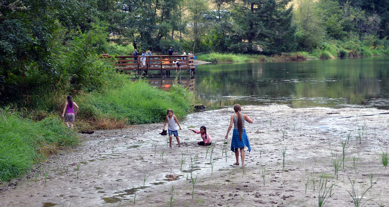 Kids Playing and fishing