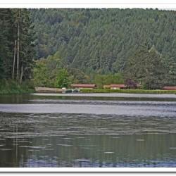 Camp Tilikum View of Lake